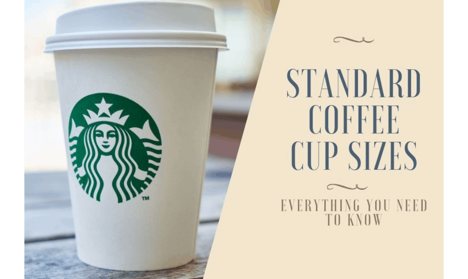 Standard Coffee Cup Sizes Everything You Need To Know